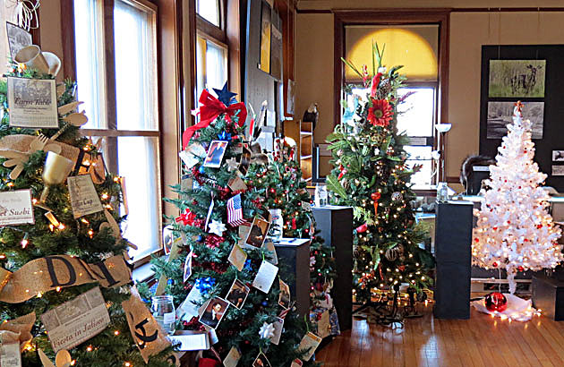 ravalli county museum gallery of trees 3